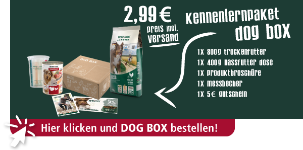 Kennenlernpaket BEWI DOG BOX